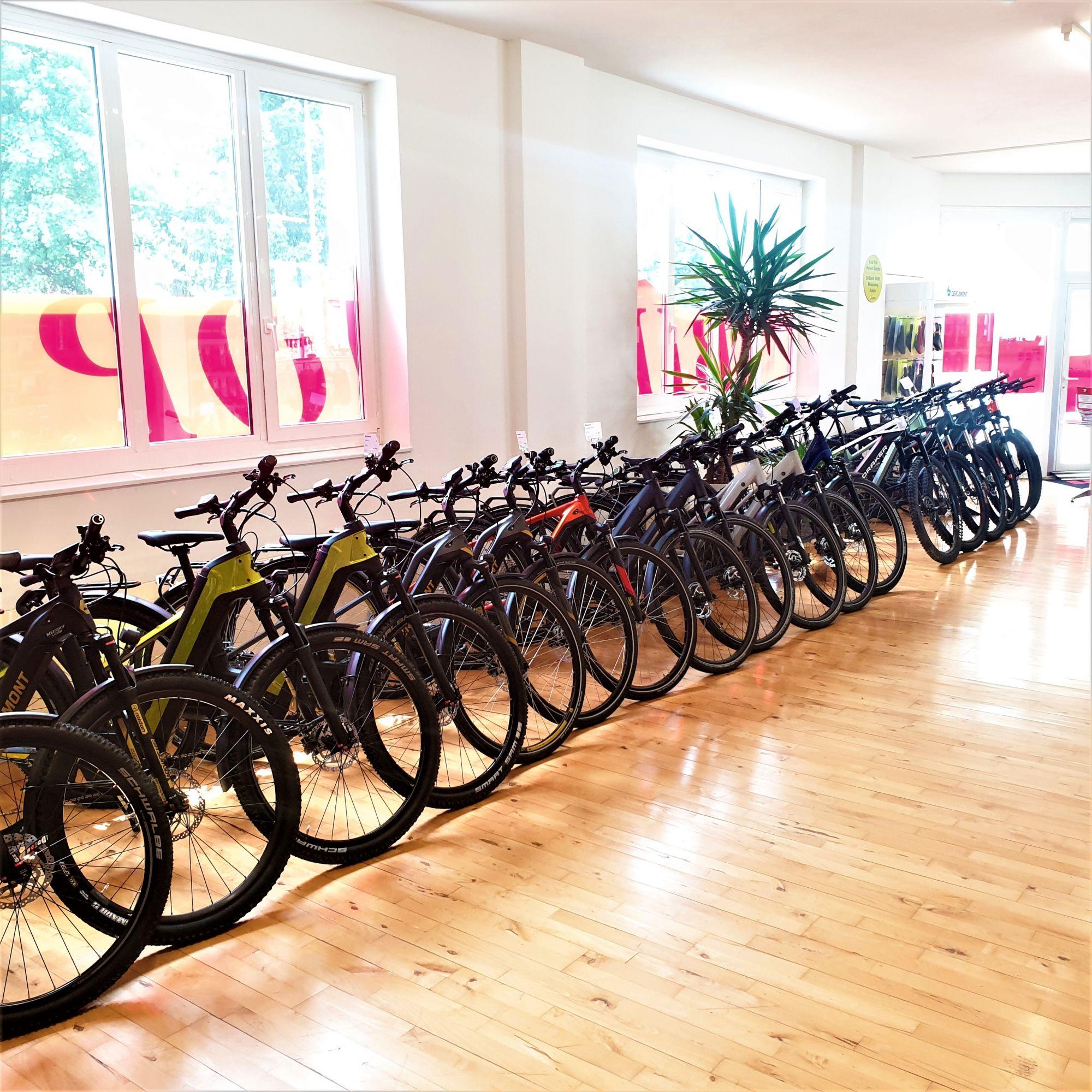Grosse E-Bike Auswahl